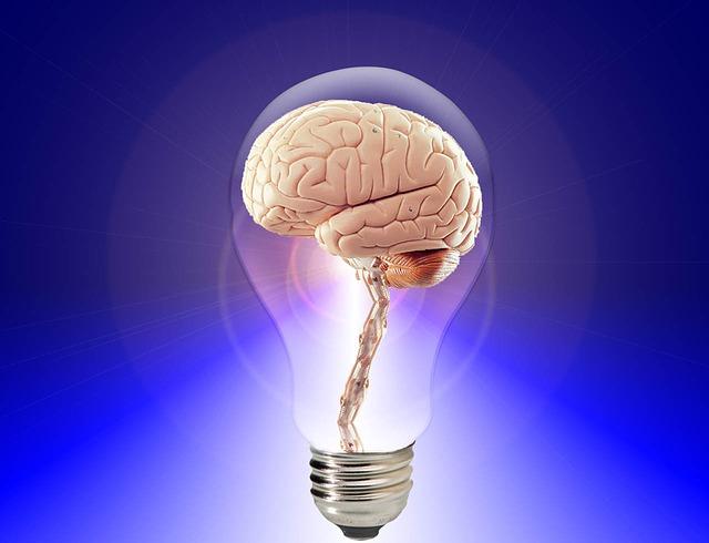 人間の「脳」に関する面白い記事を見つけましたので、ちょっと紹介します。