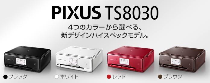 TS8030_001