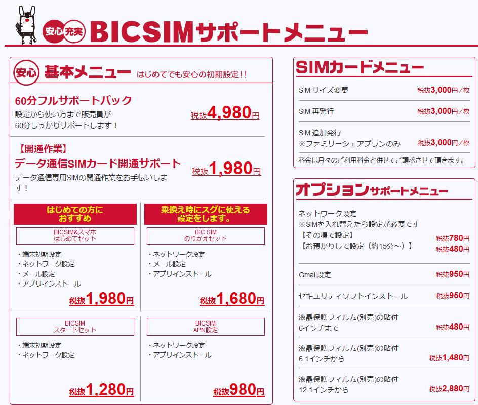 bic-sim_002