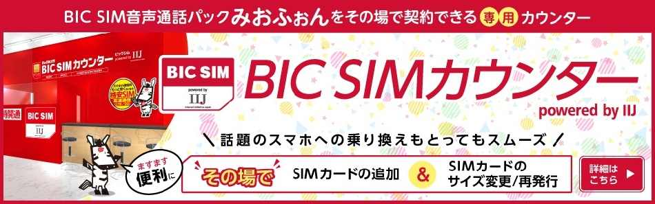 bic-sim_003
