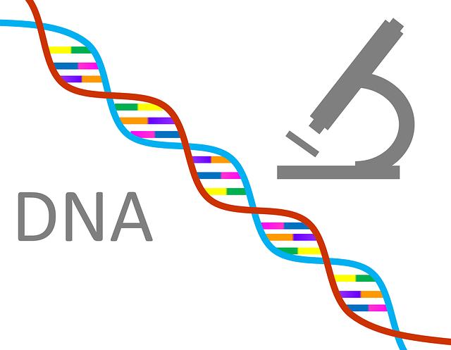 「人類の進化」に関係した、DNAの変異に関する不思議なお話です。