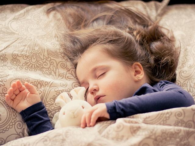 【書籍紹介】「睡眠の科学」 なぜ眠るのか なぜ目覚めるのか