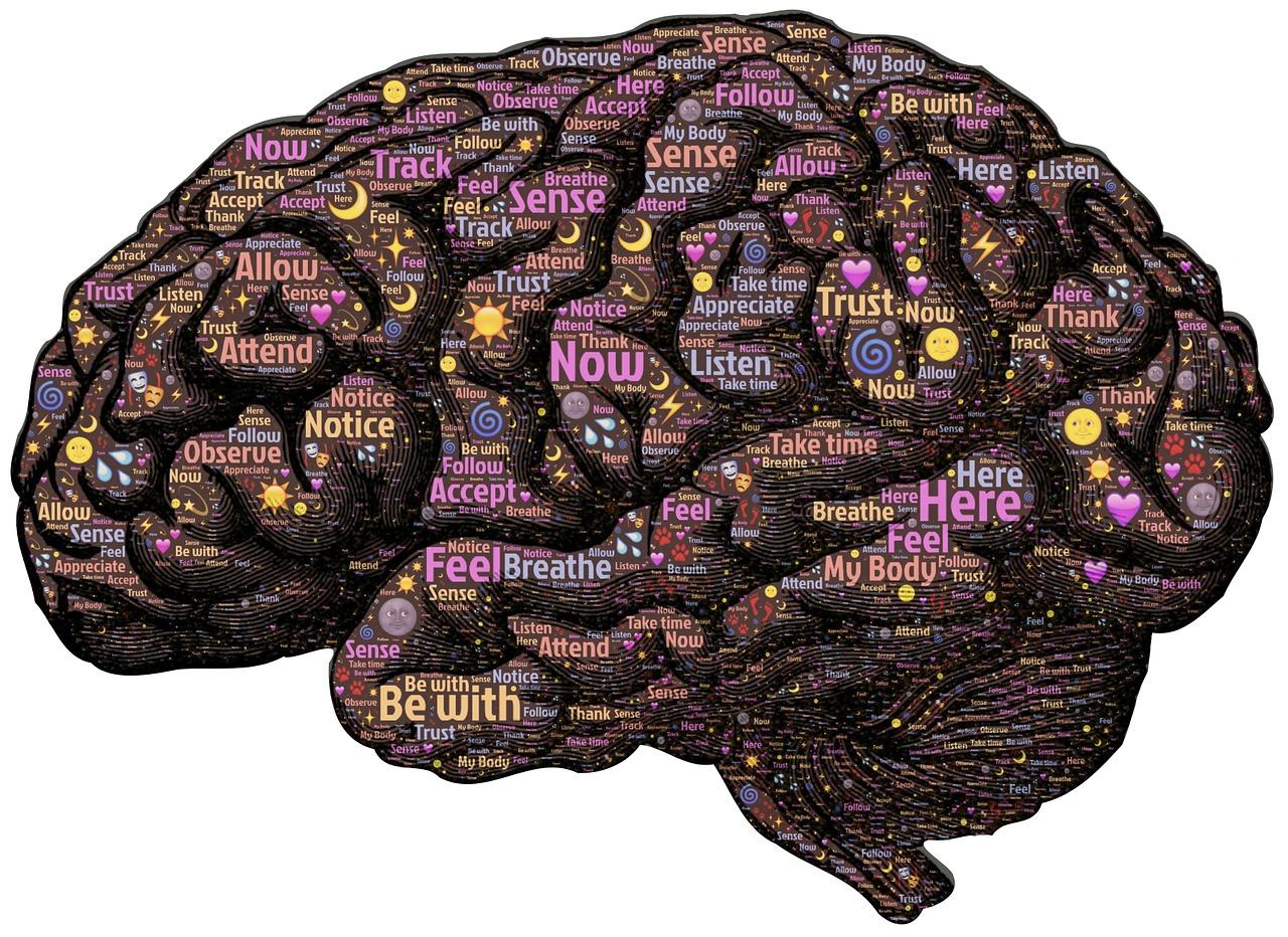 【書籍紹介】「腸と脳」 エムラン・メイヤー (著)です。