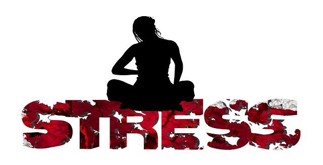 キラーストレス そのストレスは、ある日 突然、死因に変わる。