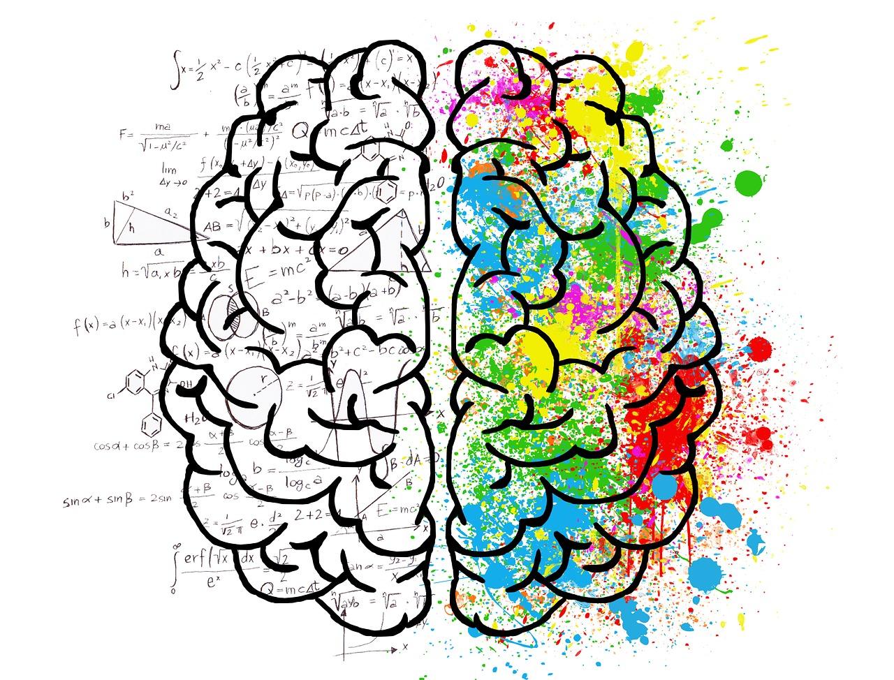 """【面白記事】 脳科学で分類""""4タイプ別""""性格診断テスト(PRESIDENT)です。"""