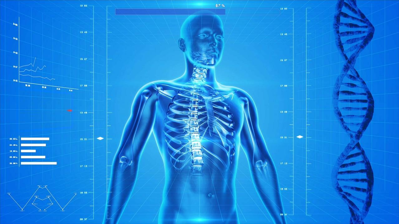 【書籍紹介】人体 神秘の巨大ネットワーク 臓器たちは語り合う (NHK出版新書)