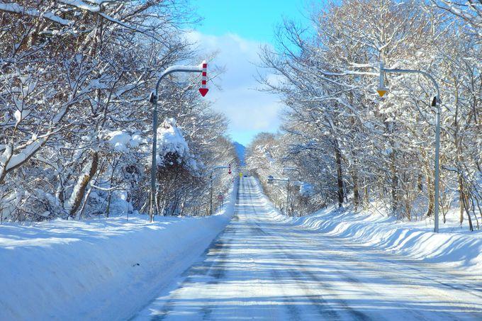 冬の支笏湖までの路